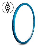 "ALIENATION Ankle Biter Rim 20"" 36H (Blue)"