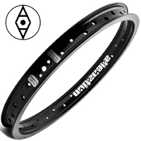 "ALIENATION Black Sheep Rim 16"" 36H Black"