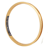 "ALIENATION Delinquent Rim 20"" 36H (Gold)"