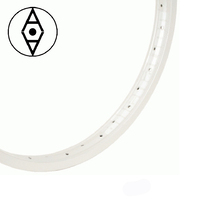 "ALIENATION Felon Rim 20"" 36H (All White)"
