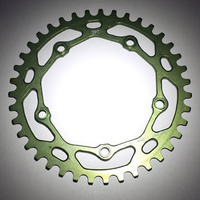 RENNEN 5 Bolt 110 Threaded 39T Chainring (Green)