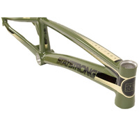 "Stay Strong 2019 'For Life' 22.25"" Frame PRO-XXXL (Green)"